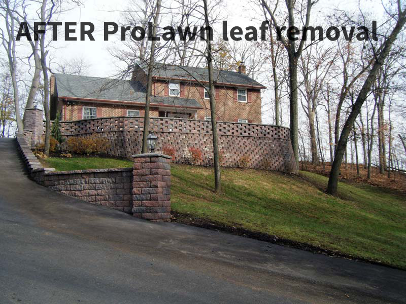 Lawn Care - ProLawn & Landscaping, Shippensburg, PA