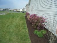 Backyard landscaping ideas, flowerbed with straight edge and brown mulch